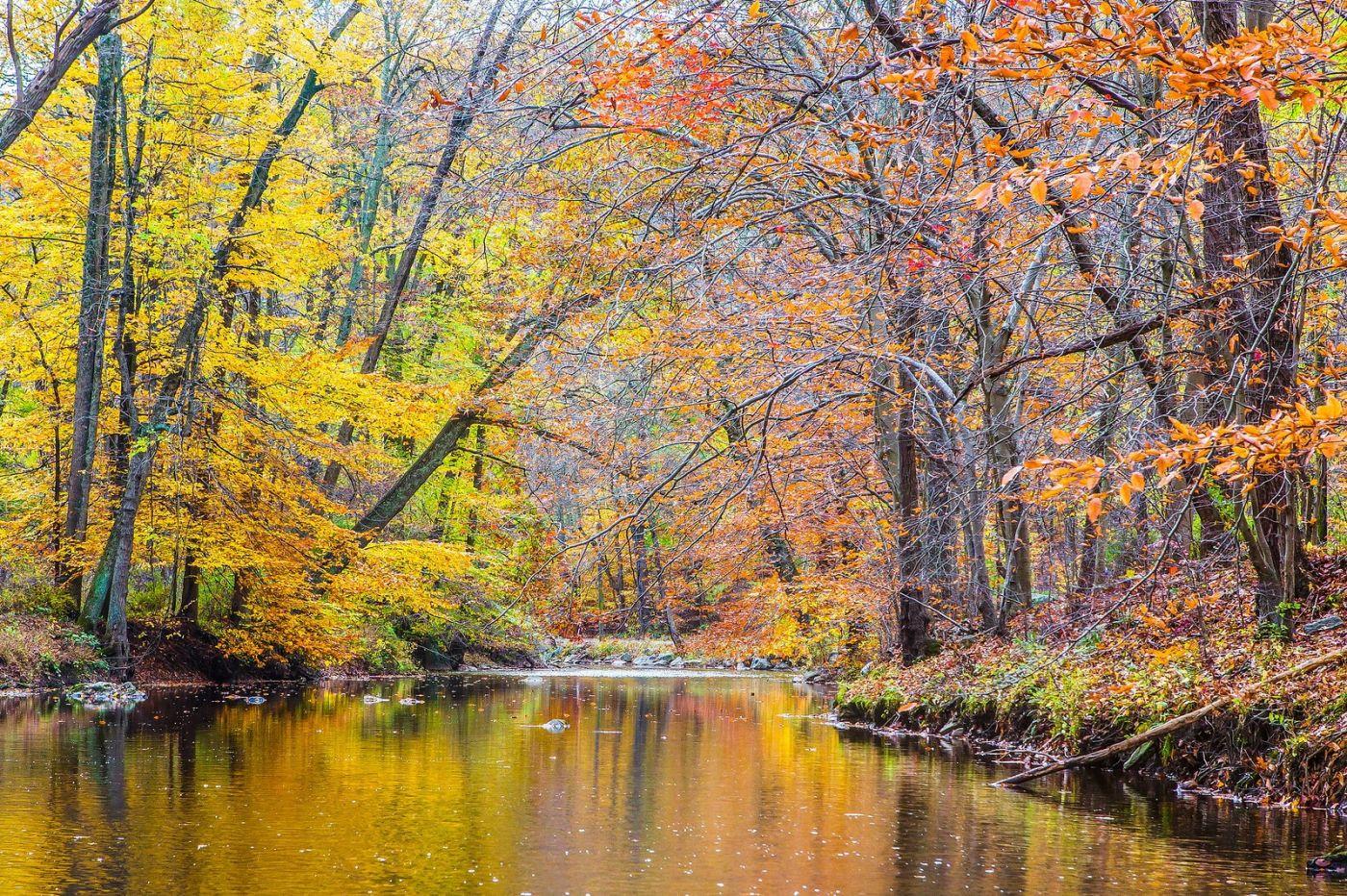 宾州雷德利克里克公园(Ridley creek park),迷人的秋色_图1-2