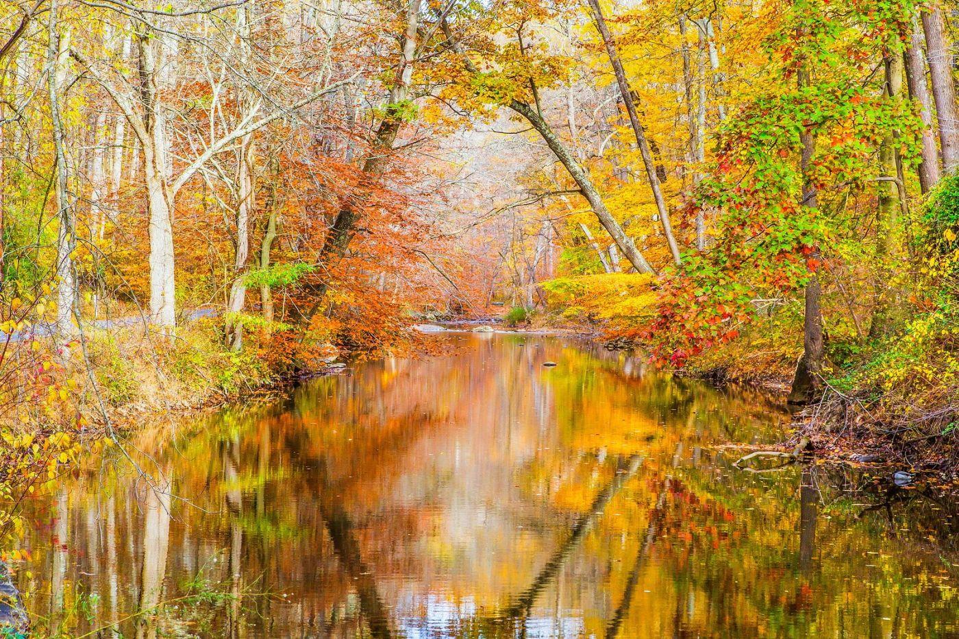 宾州雷德利克里克公园(Ridley creek park),迷人的秋色_图1-1