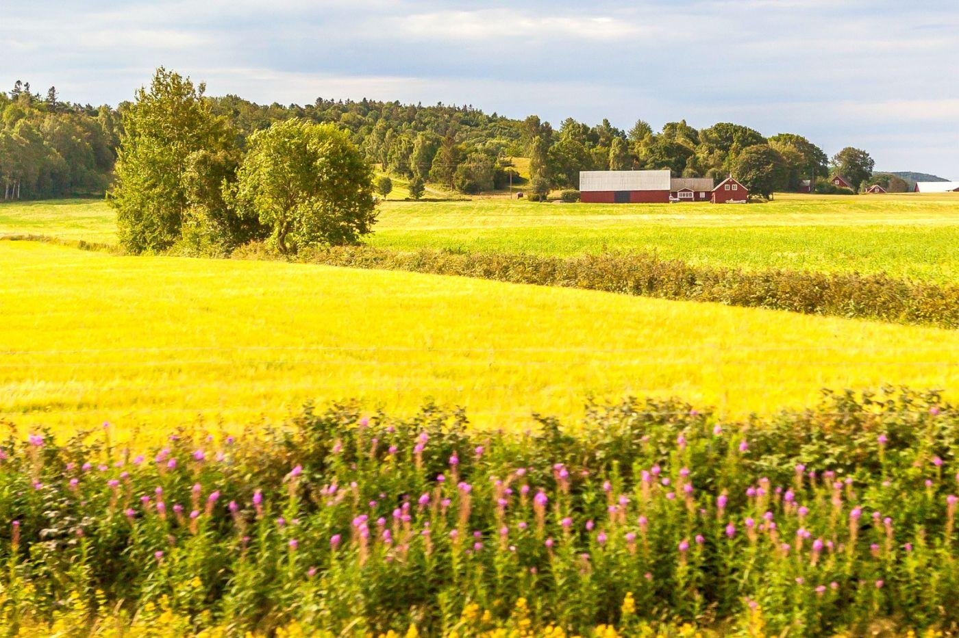 北欧旅途,温馨的家园_图1-19