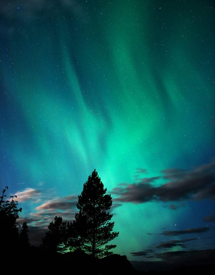 后院的夜空_图1-3