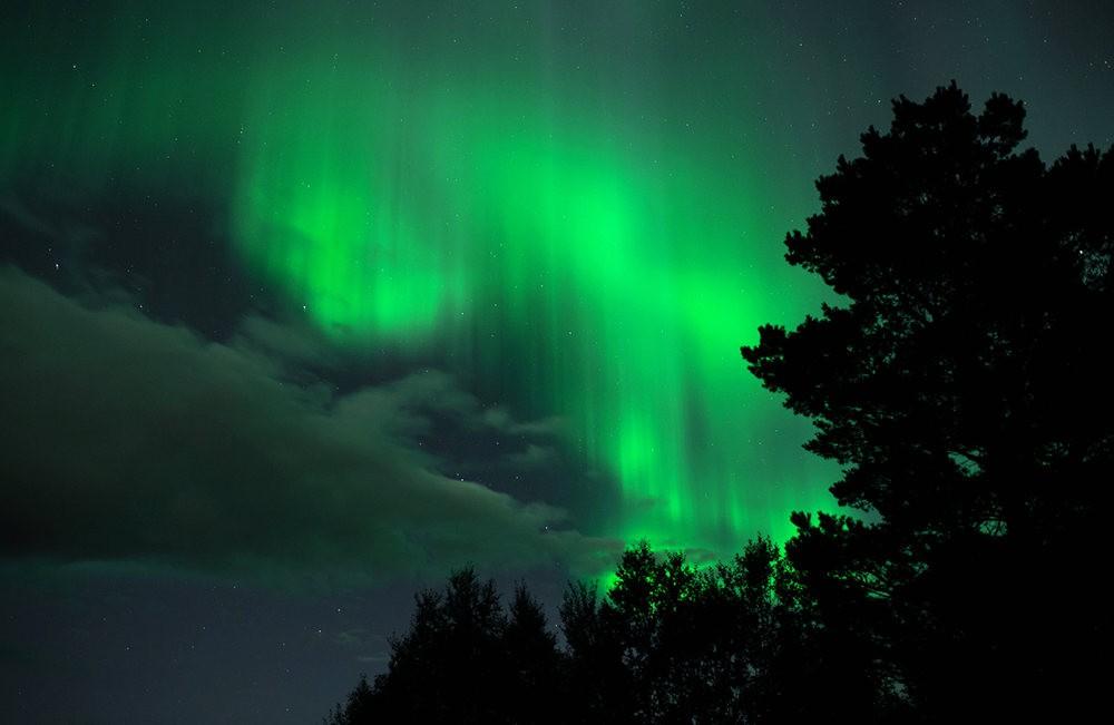 后院的夜空_图1-6