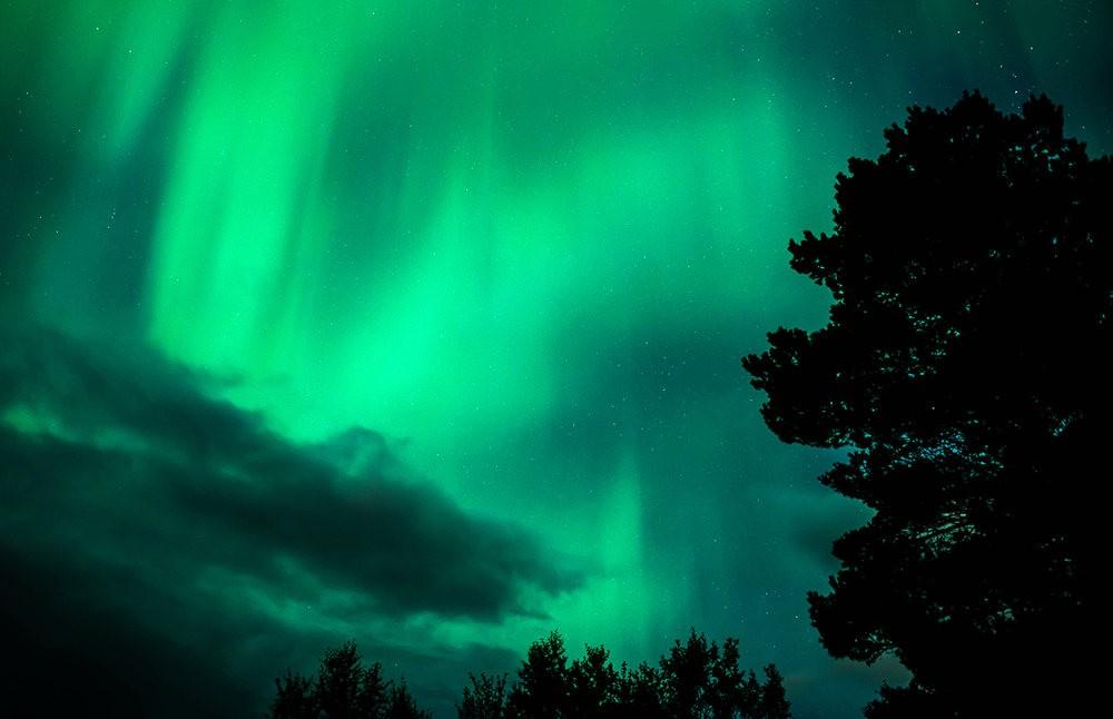 后院的夜空_图1-9