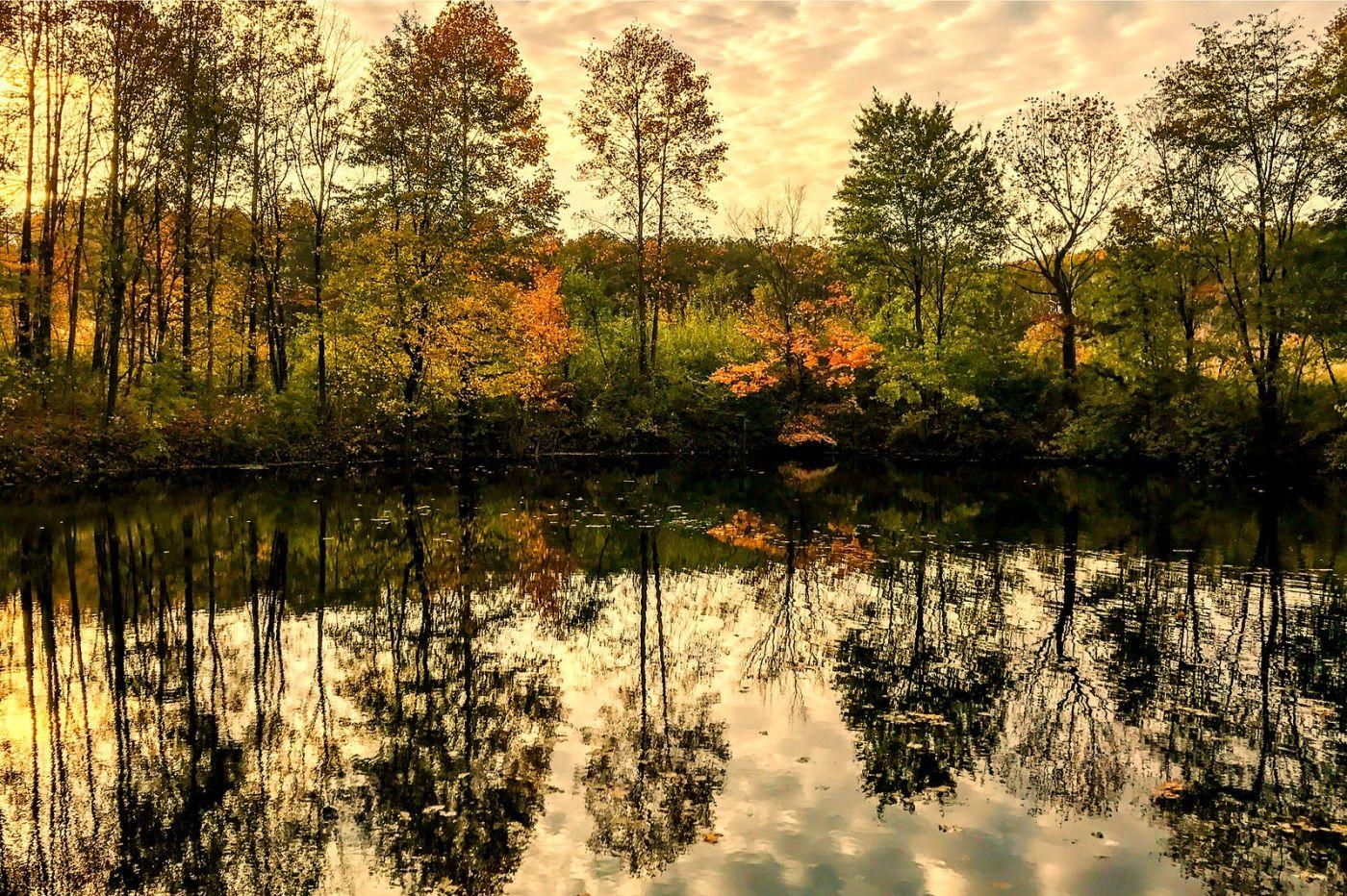 宾州长木公园,早秋和晚秋_图1-38