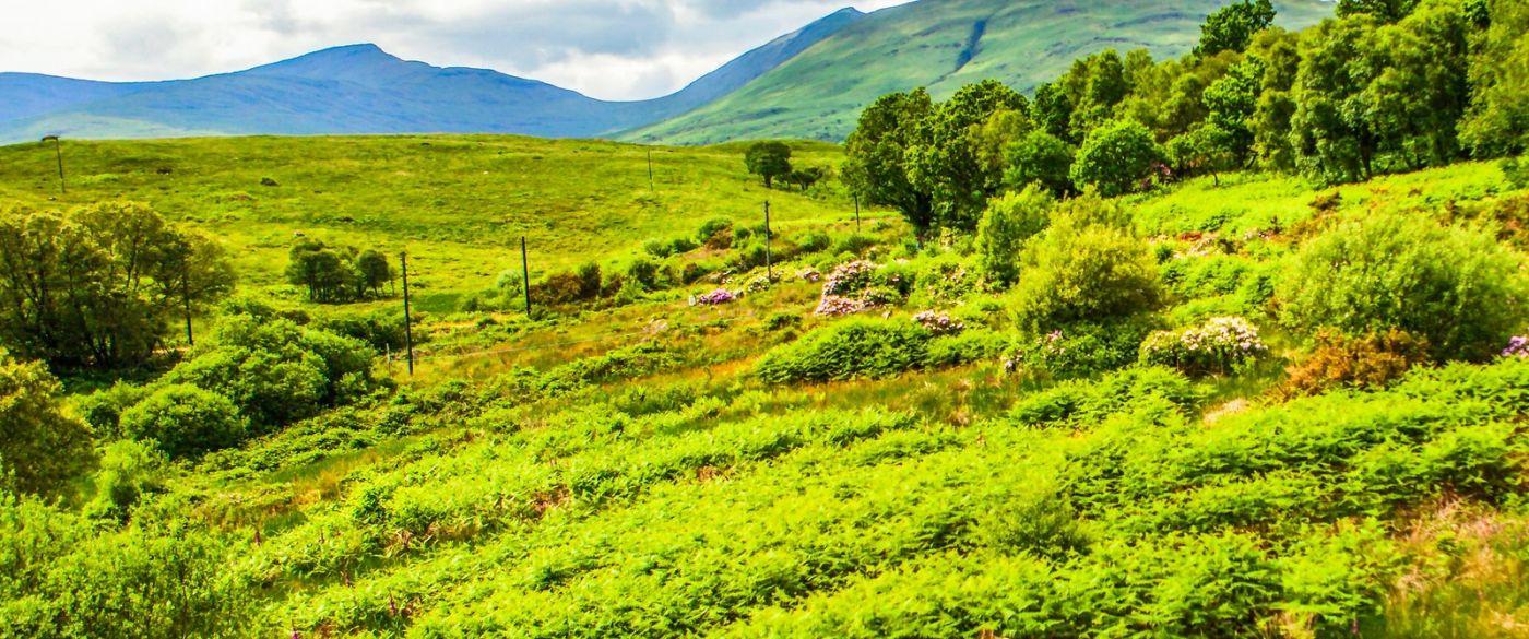 苏格兰美景,风景画看不完_图1-10