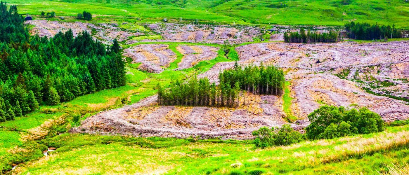 苏格兰美景,风景画看不完_图1-29