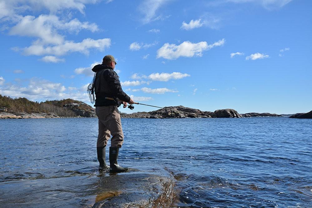 钓鱼记_图1-3