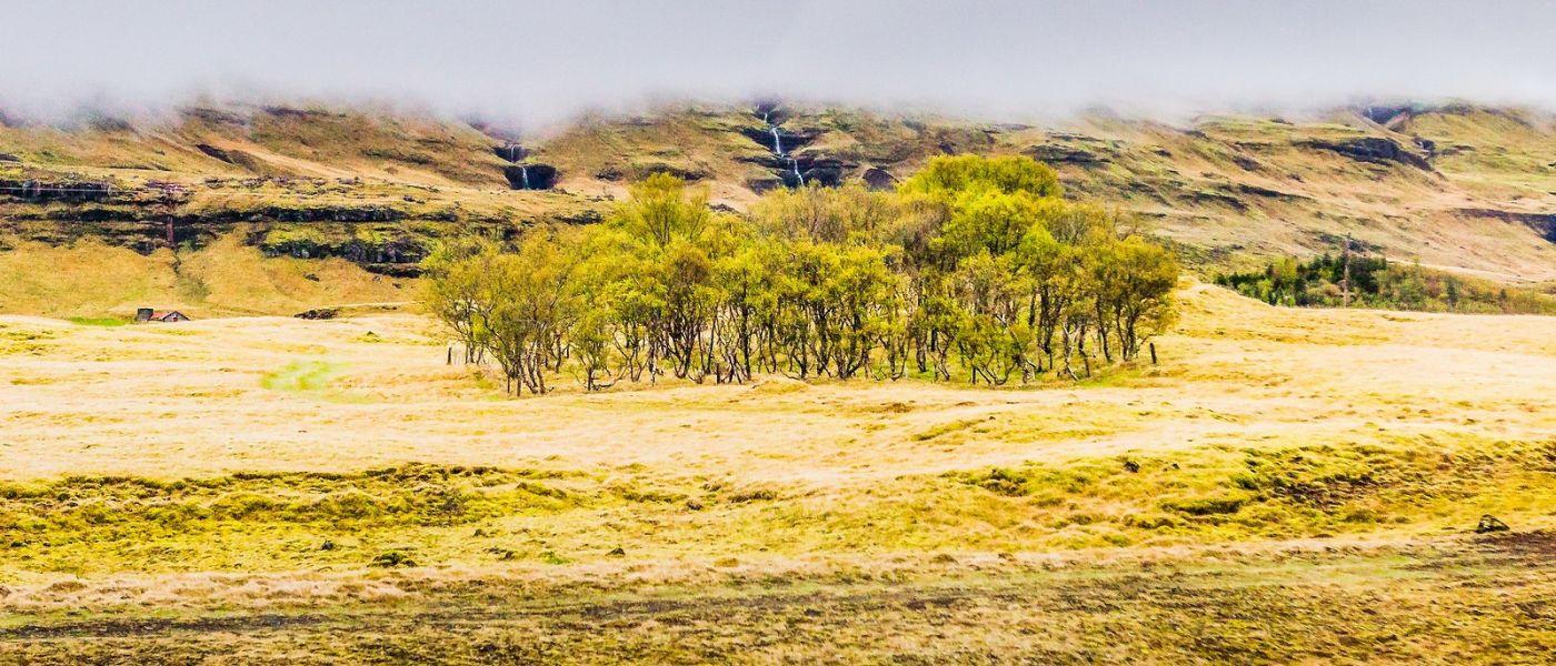 冰岛风采,山间的大小瀑布_图1-21