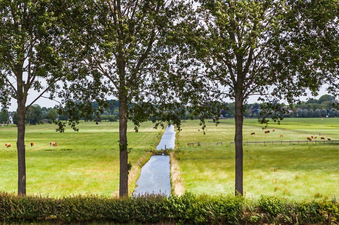 畅游莱茵河,美丽的田野_图1-8