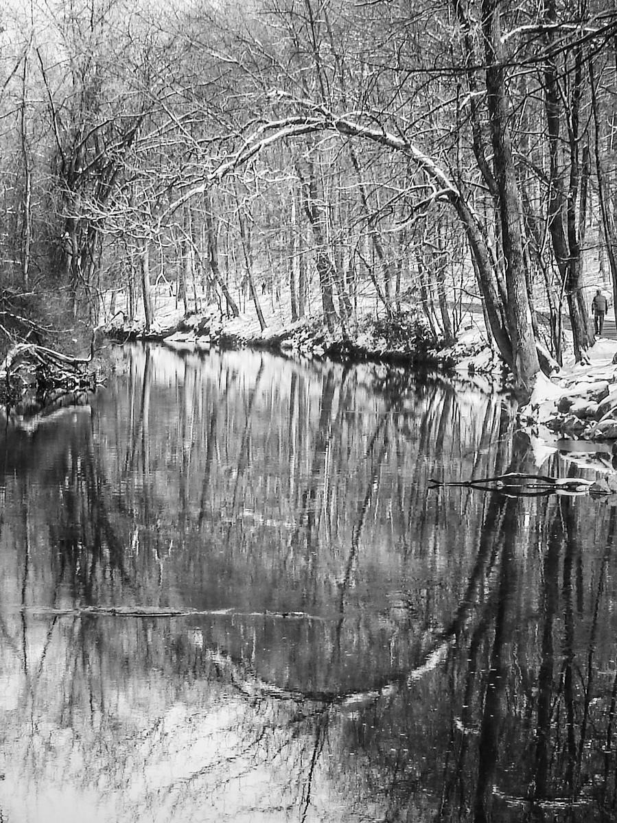 宾州雷德利克里克公园(Ridley creek park),秋去冬来_图1-2