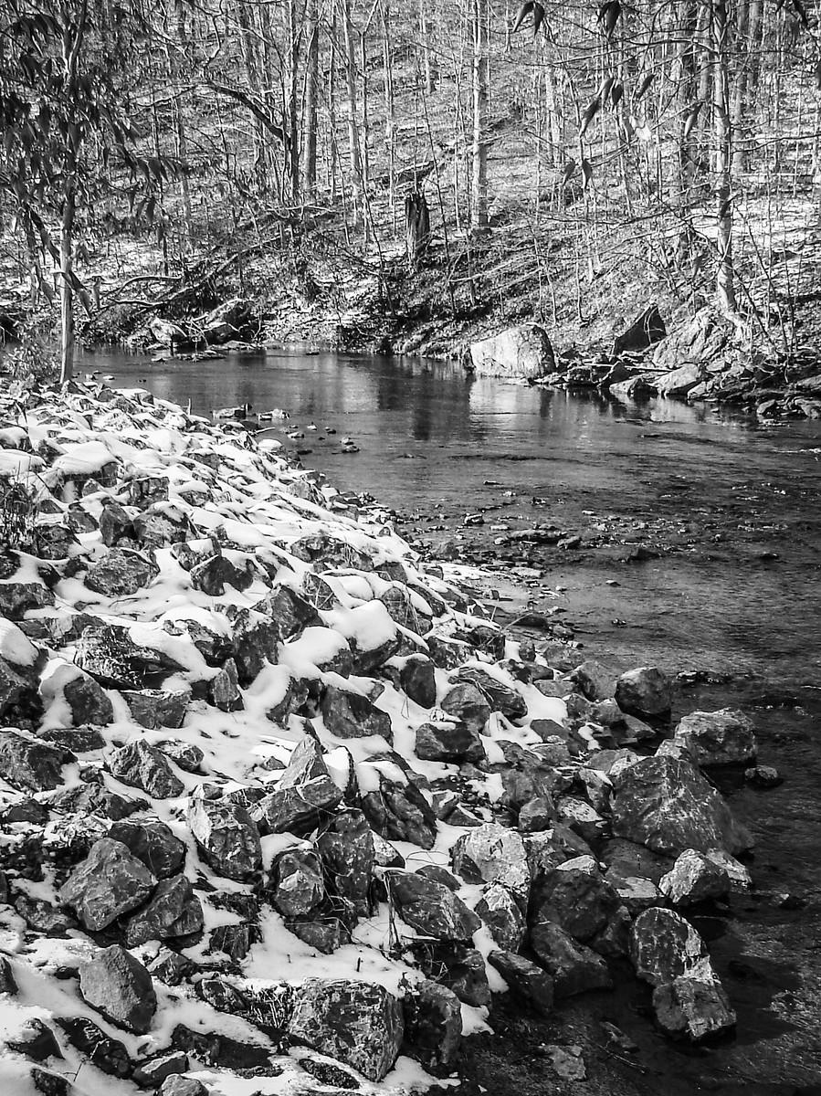 宾州雷德利克里克公园(Ridley creek park),秋去冬来_图1-5