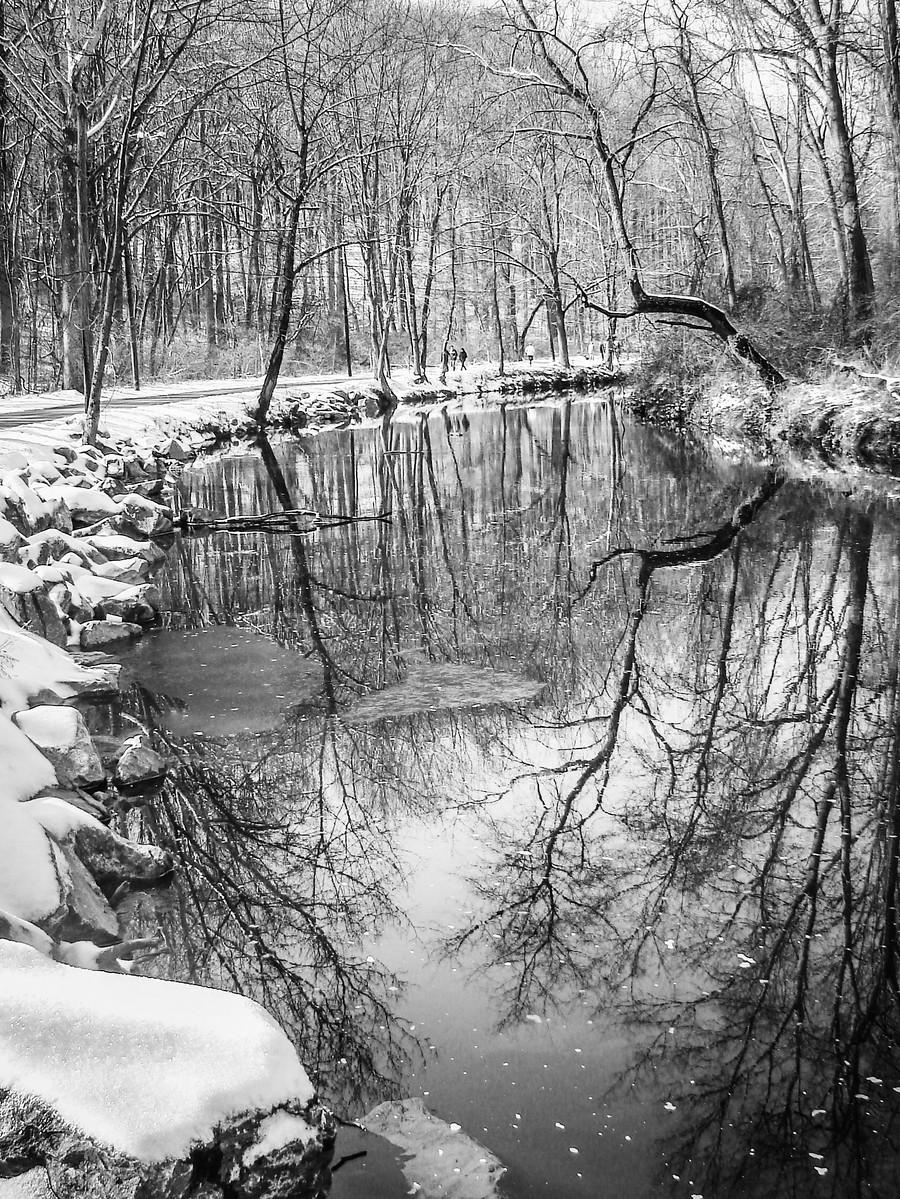 宾州雷德利克里克公园(Ridley creek park),秋去冬来_图1-3