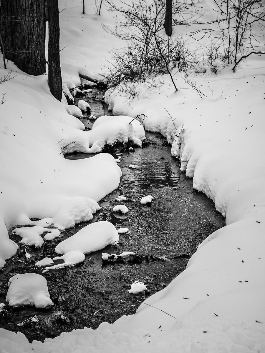 宾州雷德利克里克公园(Ridley creek park),秋去冬来_图1-11