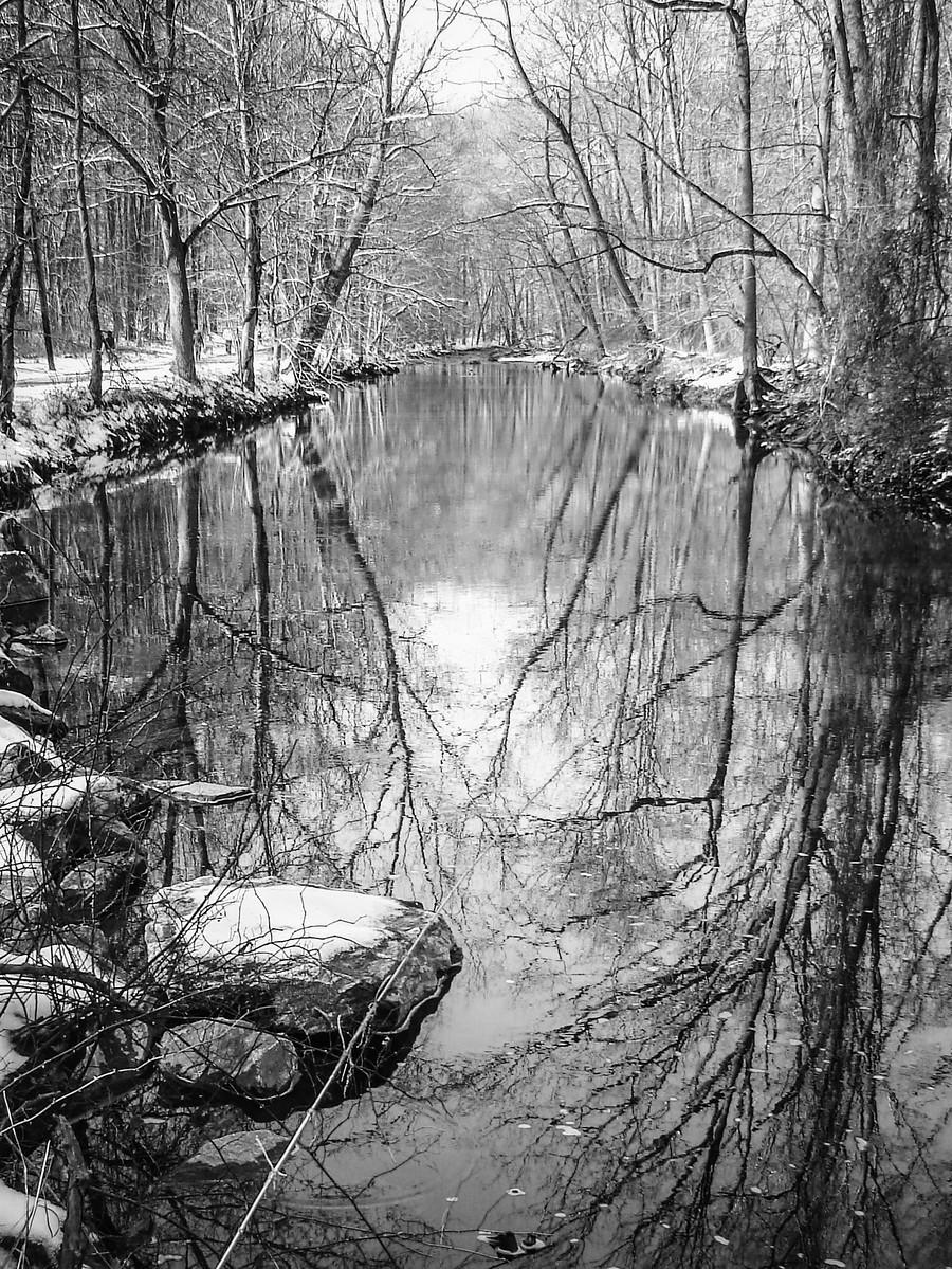 宾州雷德利克里克公园(Ridley creek park),秋去冬来_图1-20