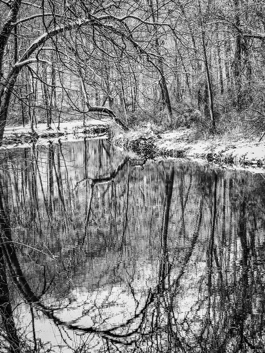 宾州雷德利克里克公园(Ridley creek park),秋去冬来_图1-24