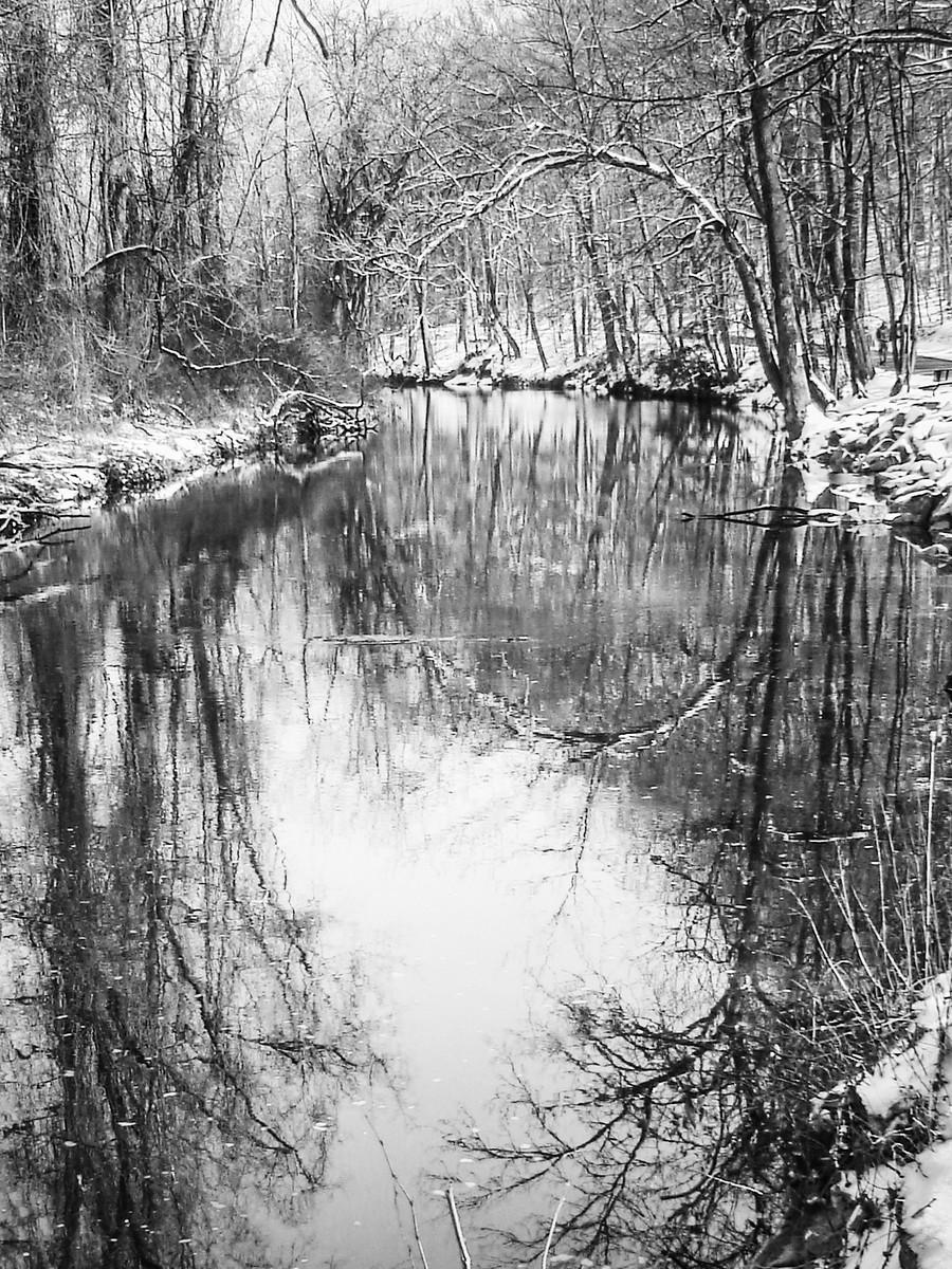 宾州雷德利克里克公园(Ridley creek park),秋去冬来_图1-28