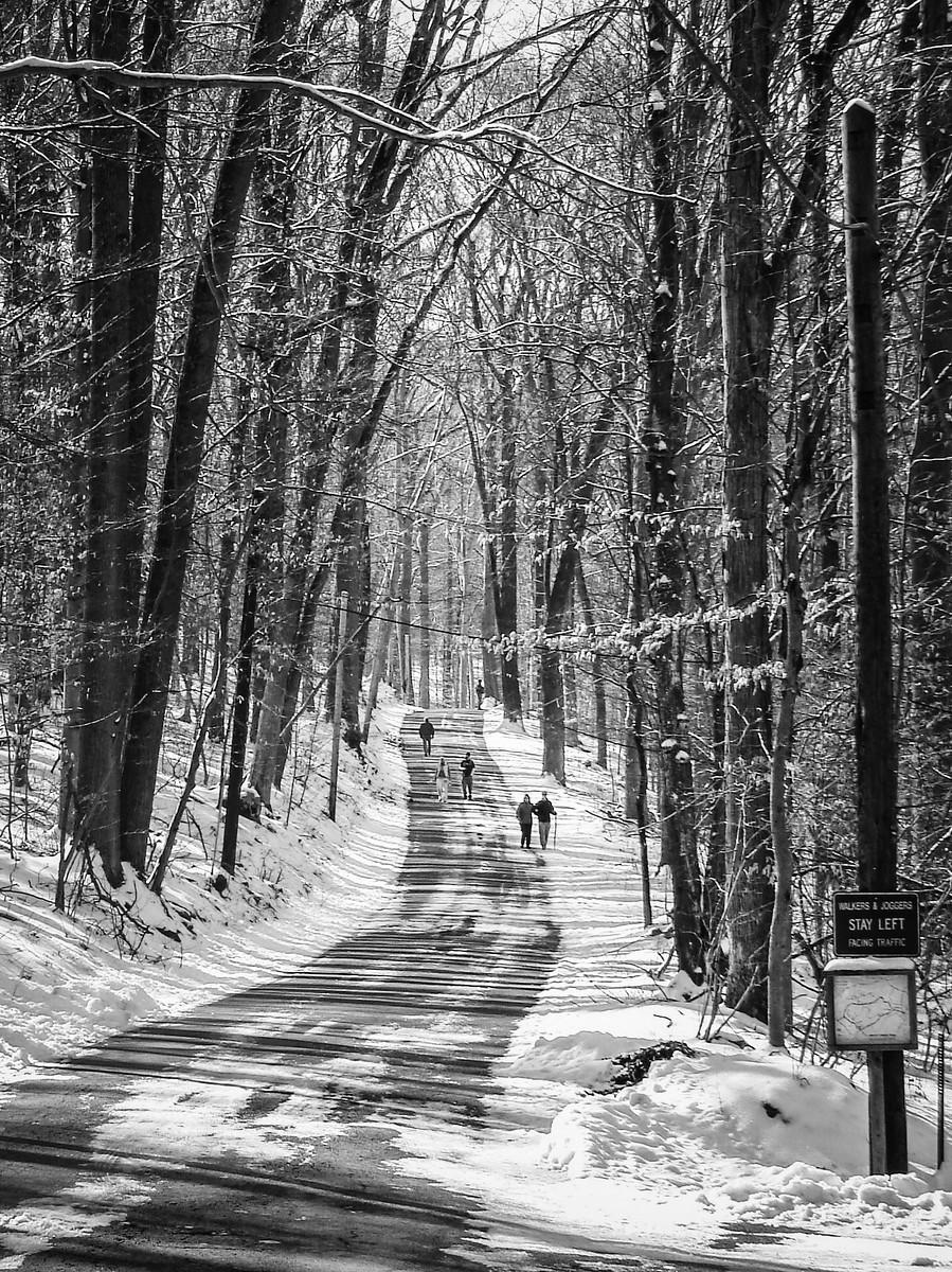 宾州雷德利克里克公园(Ridley creek park),秋去冬来_图1-26