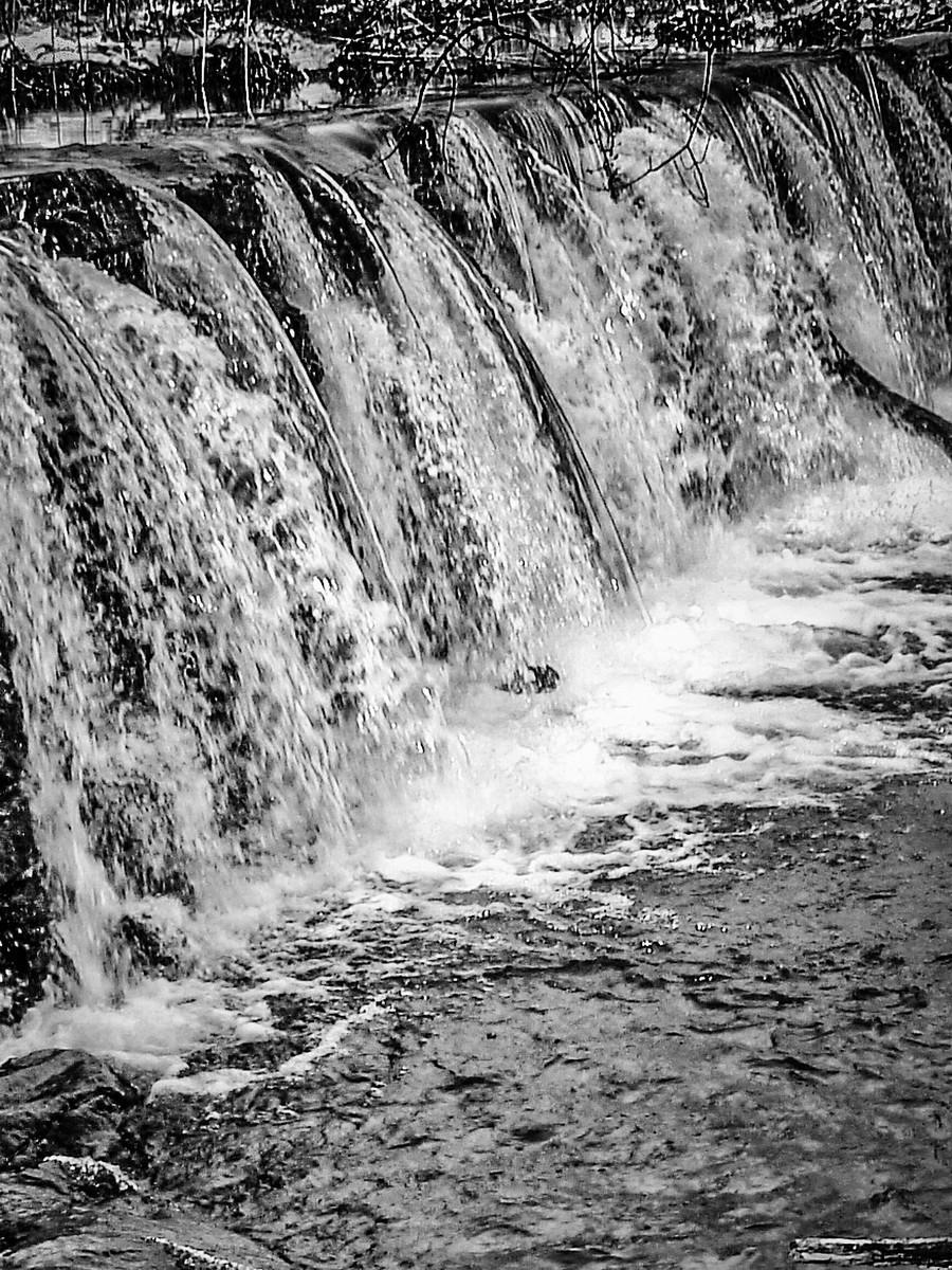 宾州雷德利克里克公园(Ridley creek park),秋去冬来_图1-29