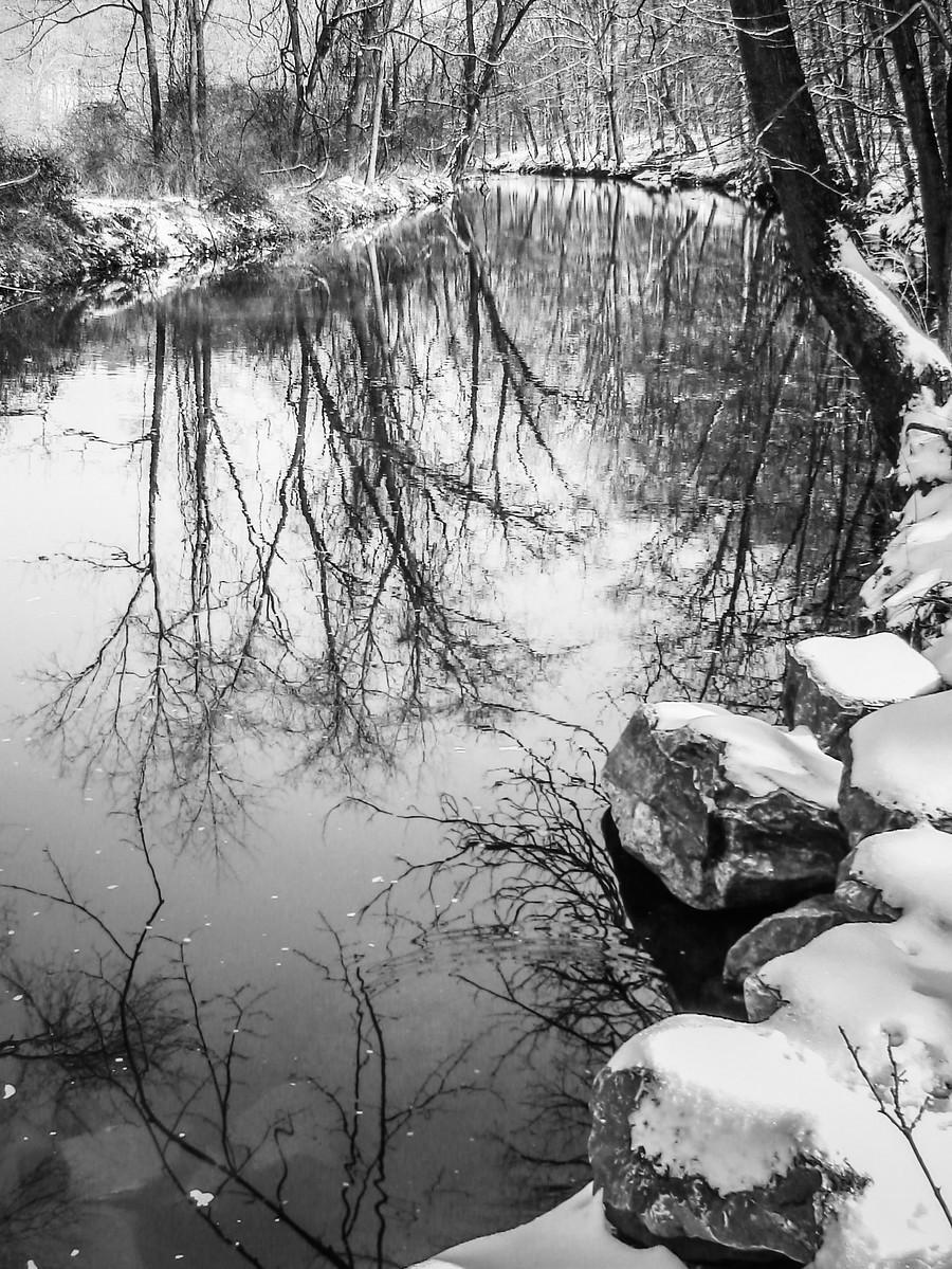 宾州雷德利克里克公园(Ridley creek park),秋去冬来_图1-38
