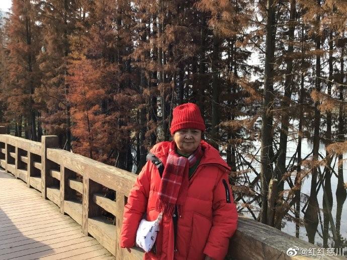 青白江凤凰湖_图1-3