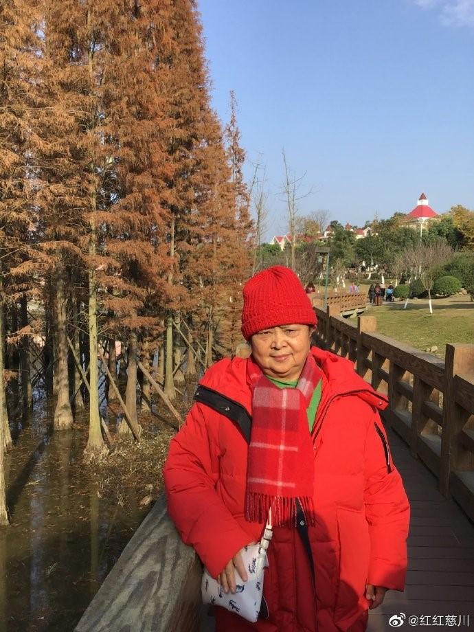青白江凤凰湖_图1-4