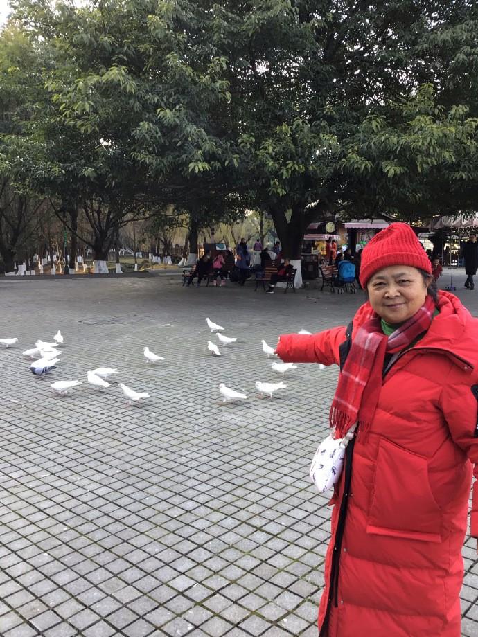 青白江凤凰湖_图1-1