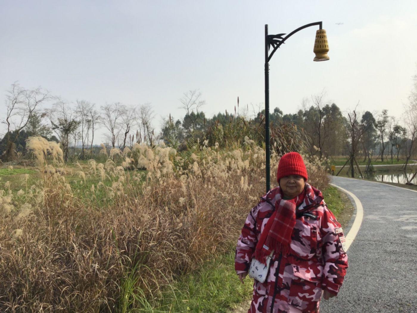 新津白鹤滩湿地公园_图1-19