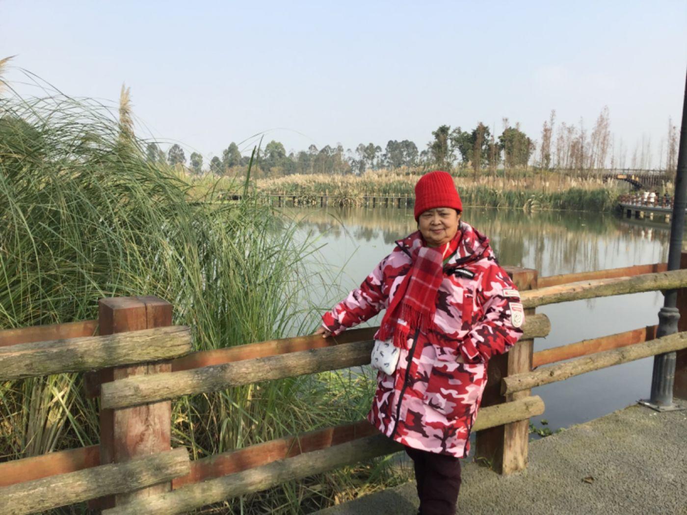 新津白鹤滩湿地公园_图1-12