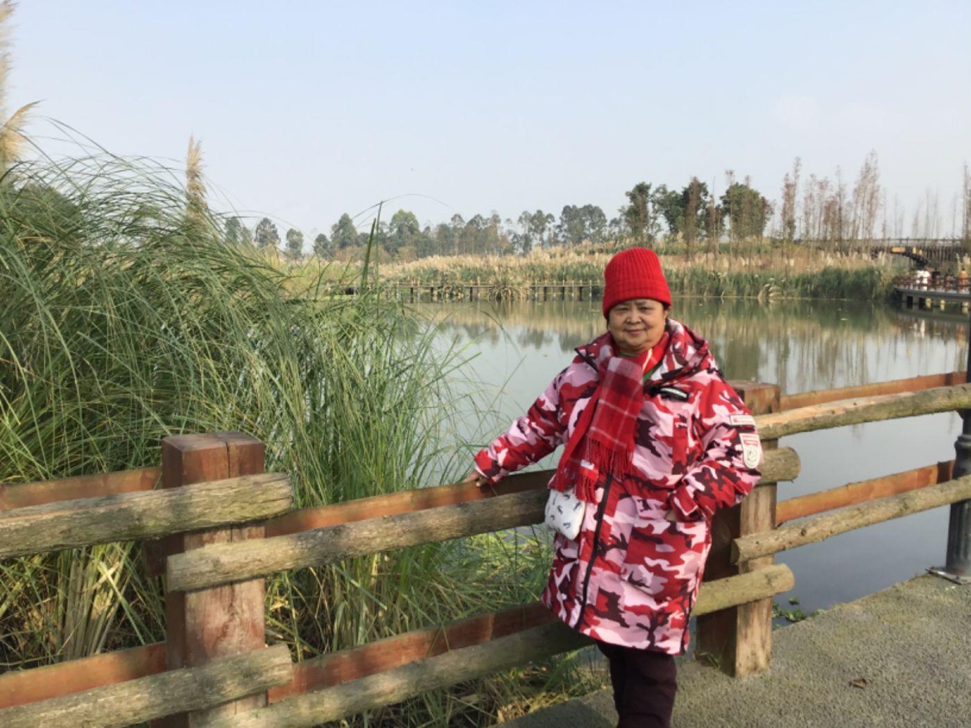新津白鹤滩湿地公园_图1-10