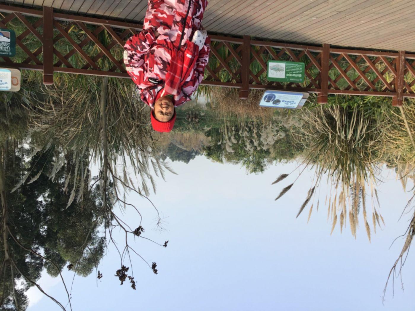 新津白鹤滩湿地公园_图1-39