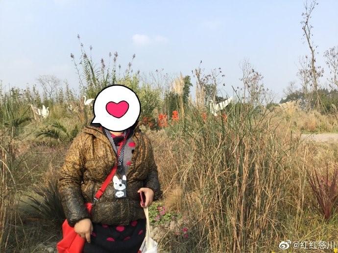 新津白鹤滩湿地公园_图1-4