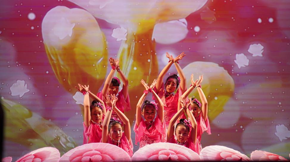高娓娓:品味舞与画的艺术—梁坤钿舞蹈中心庆祝成立十周年庆典暨新年文艺演出圆满成功 ..._图1-8