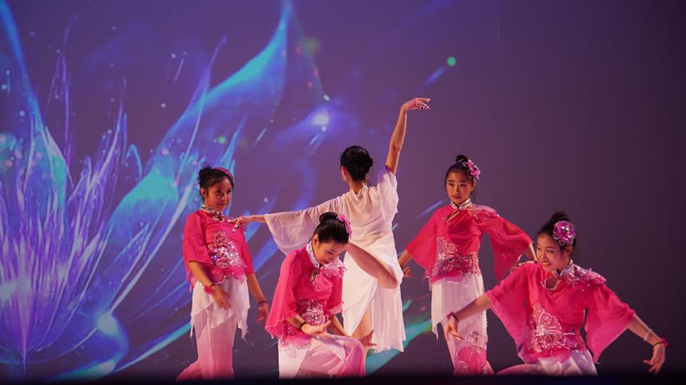 高娓娓:品味舞与画的艺术—梁坤钿舞蹈中心庆祝成立十周年庆典暨新年文艺演出圆满成功 ..._图1-11