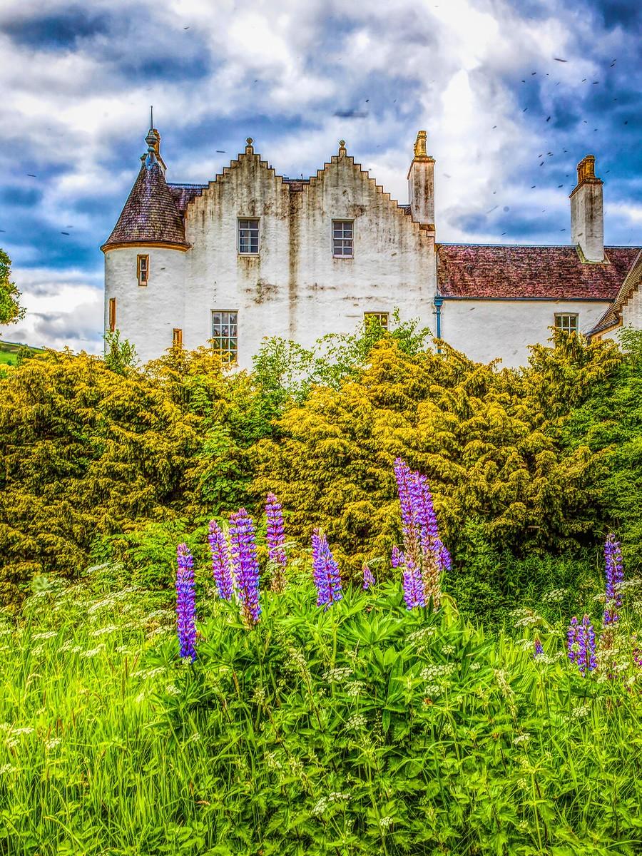 苏格兰布莱尔城堡(Blair Castle),13世纪的建筑_图1-8