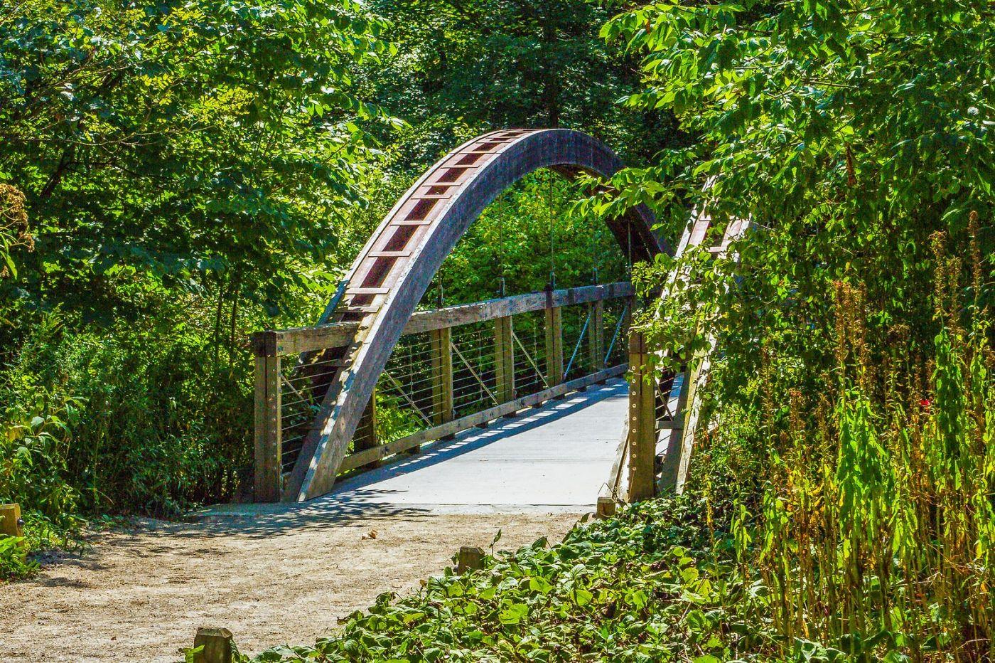 宾州长木公园,木桥木屋_图1-37