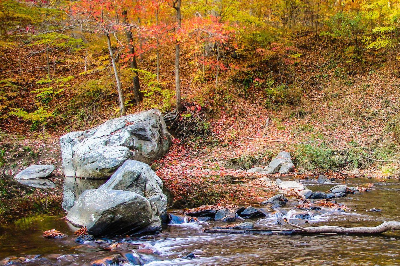 宾州雷德利克里克公园(Ridley creek park),糊涂的爱_图1-10