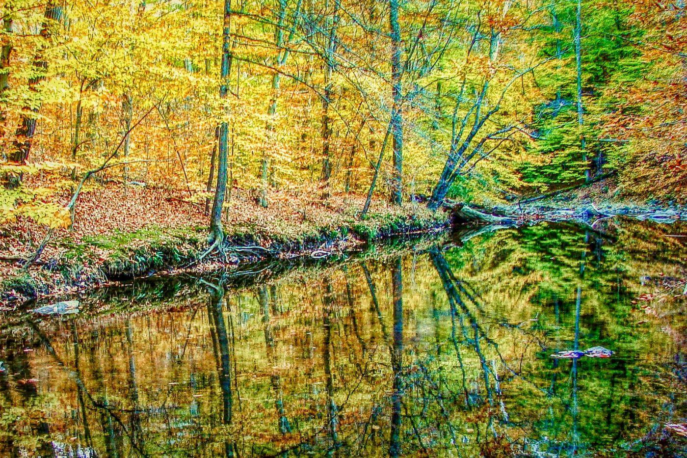 宾州雷德利克里克公园(Ridley creek park),糊涂的爱_图1-12