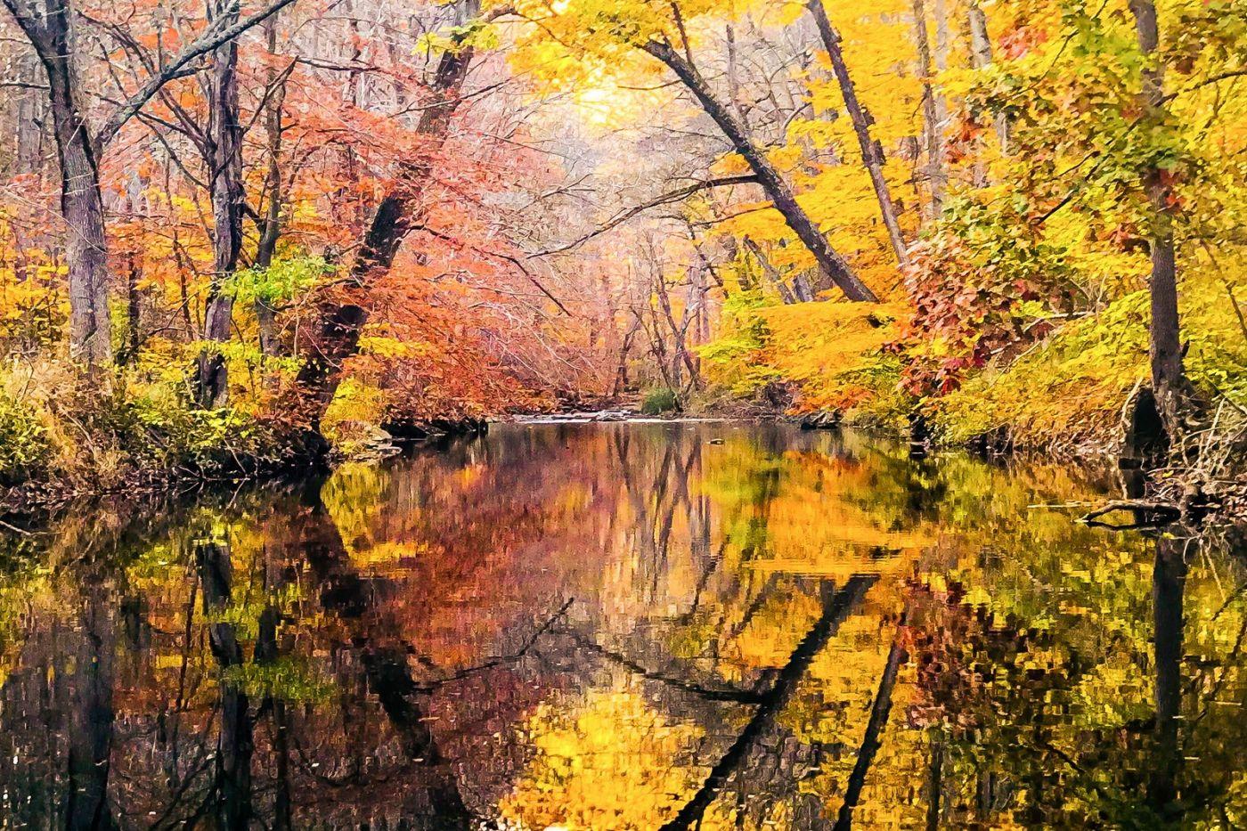 宾州雷德利克里克公园(Ridley creek park),糊涂的爱_图1-5