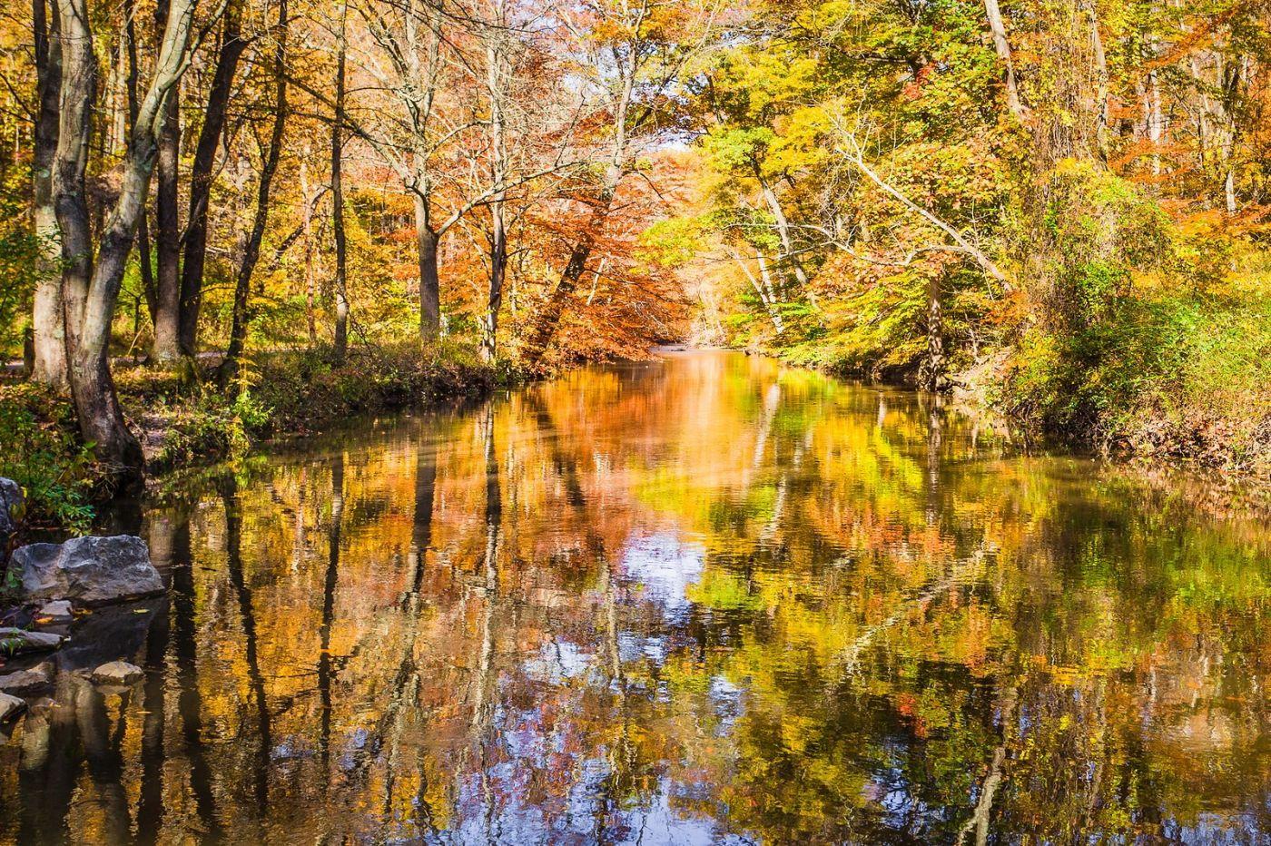 宾州雷德利克里克公园(Ridley creek park),糊涂的爱_图1-2