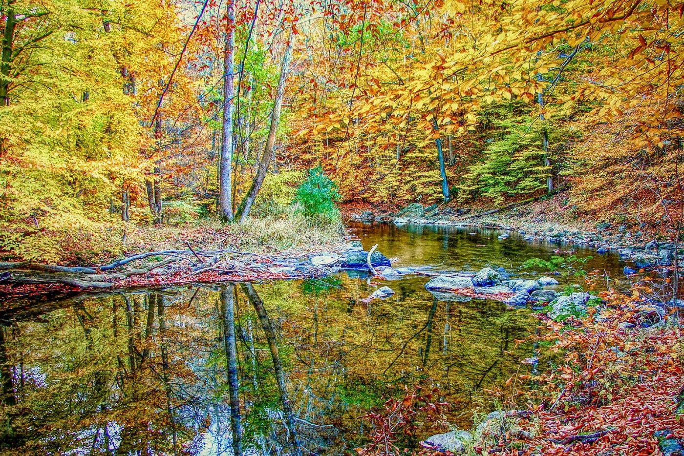 宾州雷德利克里克公园(Ridley creek park),糊涂的爱_图1-16