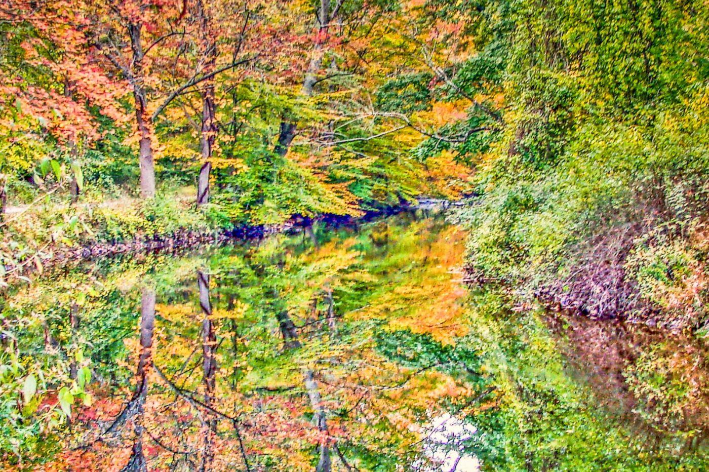 宾州雷德利克里克公园(Ridley creek park),糊涂的爱_图1-30