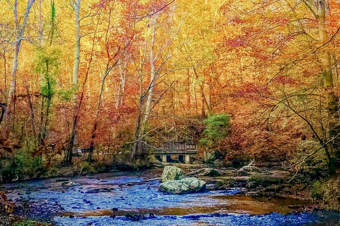 宾州雷德利克里克公园(Ridley creek park),糊涂的爱_图1-32