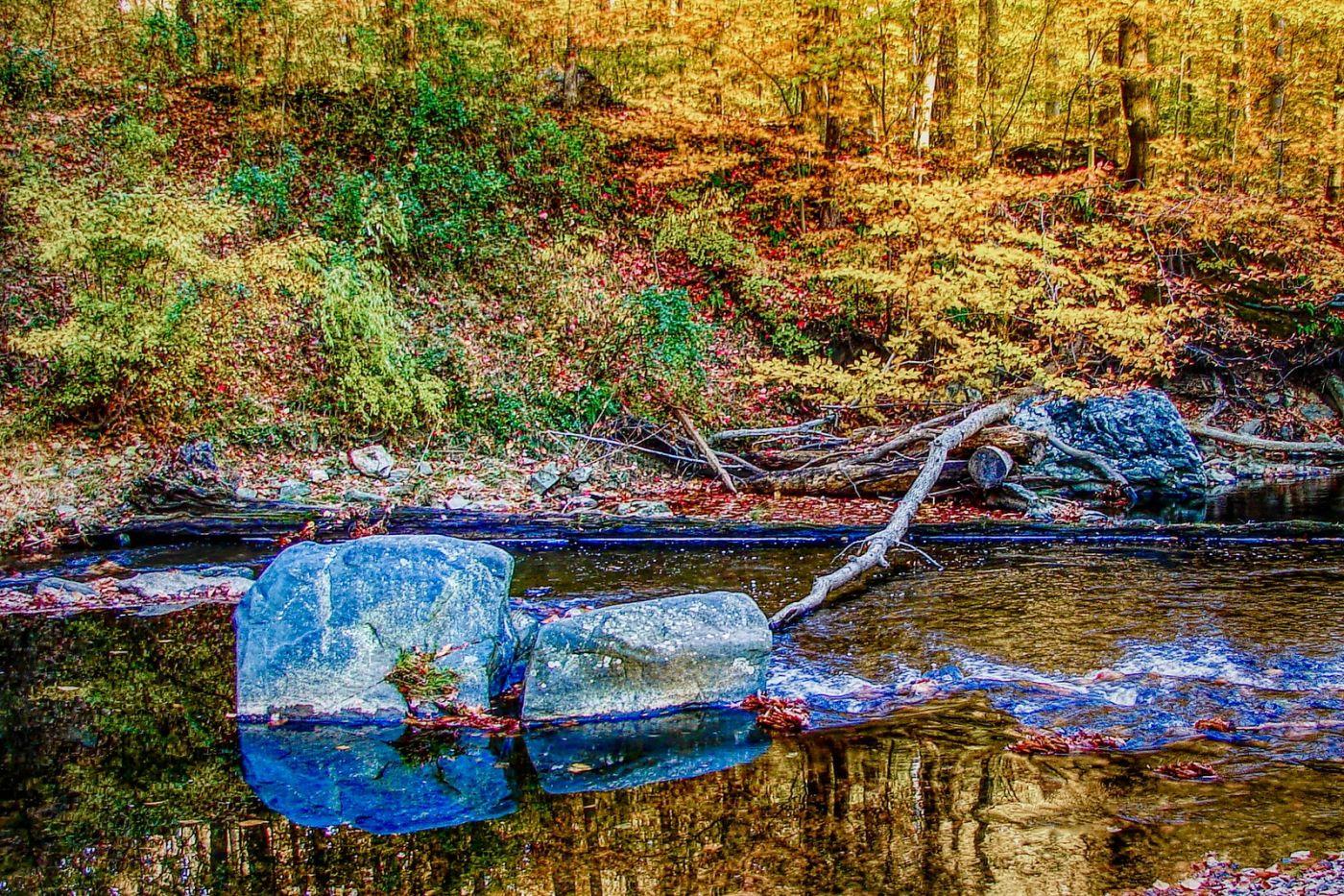 宾州雷德利克里克公园(Ridley creek park),糊涂的爱_图1-36
