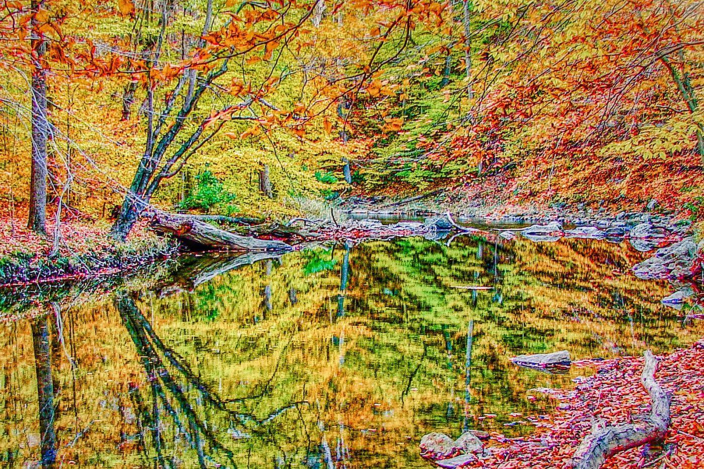 宾州雷德利克里克公园(Ridley creek park),糊涂的爱_图1-38