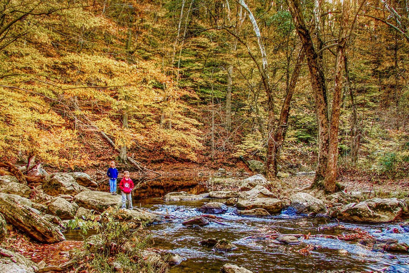 宾州雷德利克里克公园(Ridley creek park),糊涂的爱_图1-40