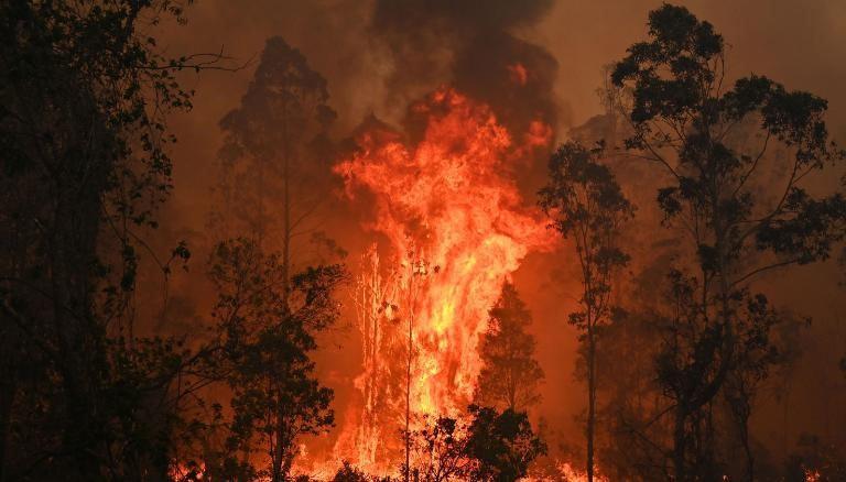 澳大利亚正在燃烧_图1-2