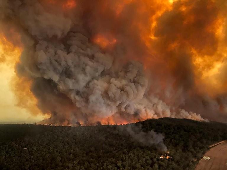 澳大利亚正在燃烧_图1-4