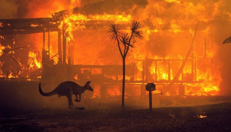 澳大利亚正在燃烧_图1-5