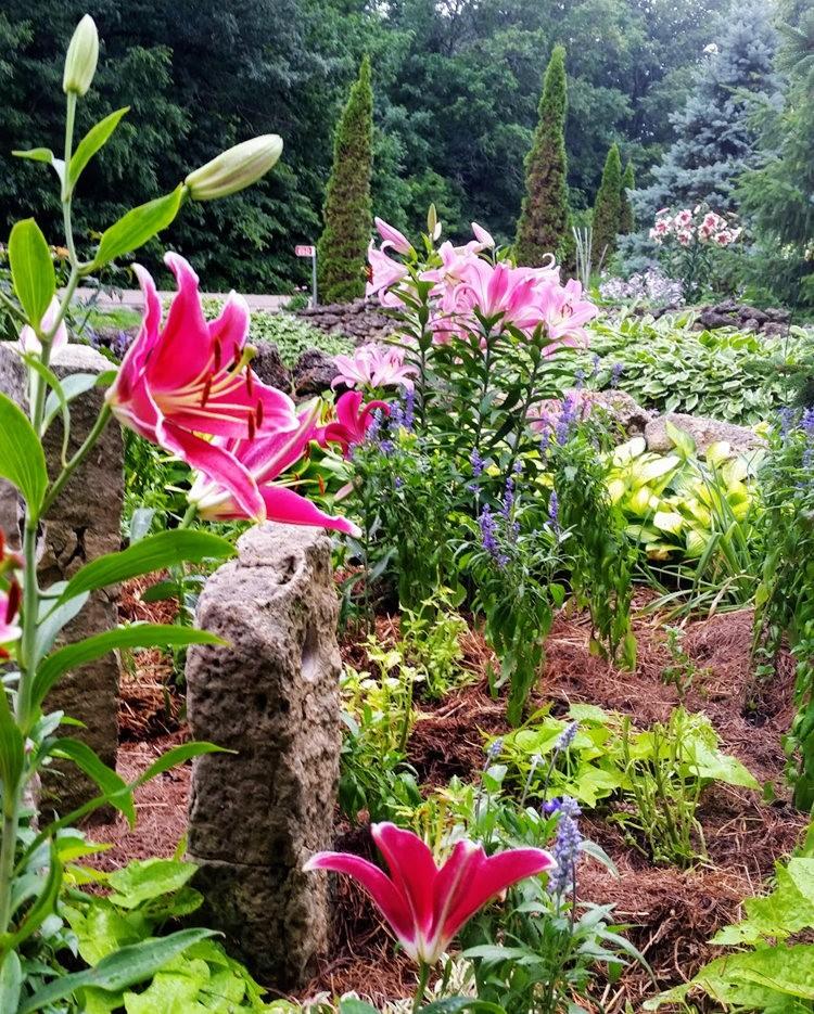 采石场花园----2_图1-2