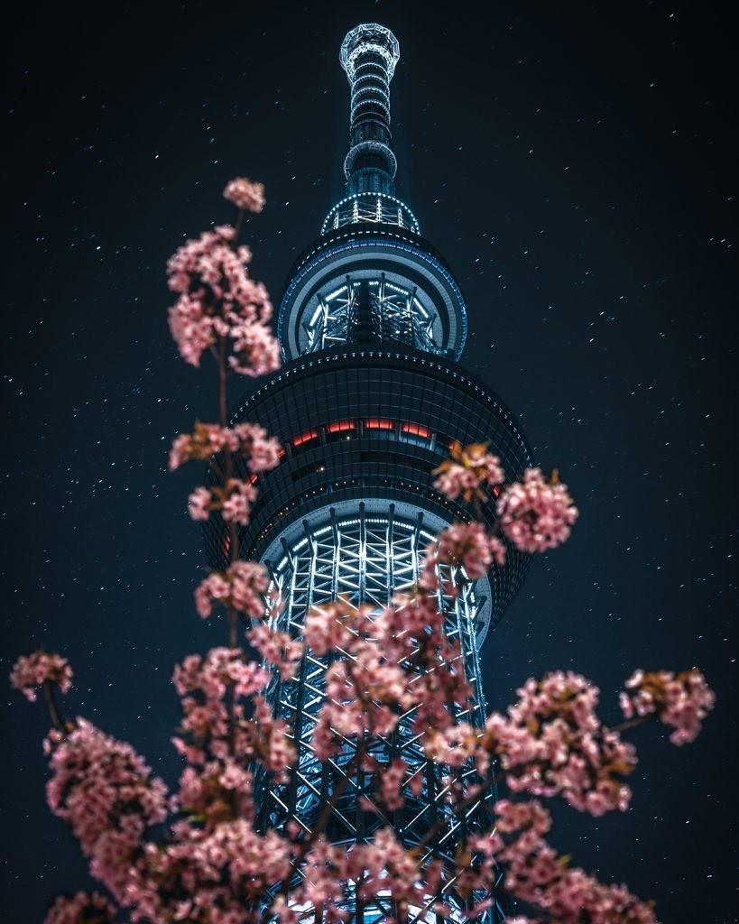 在日本遥远的地方_图1-6