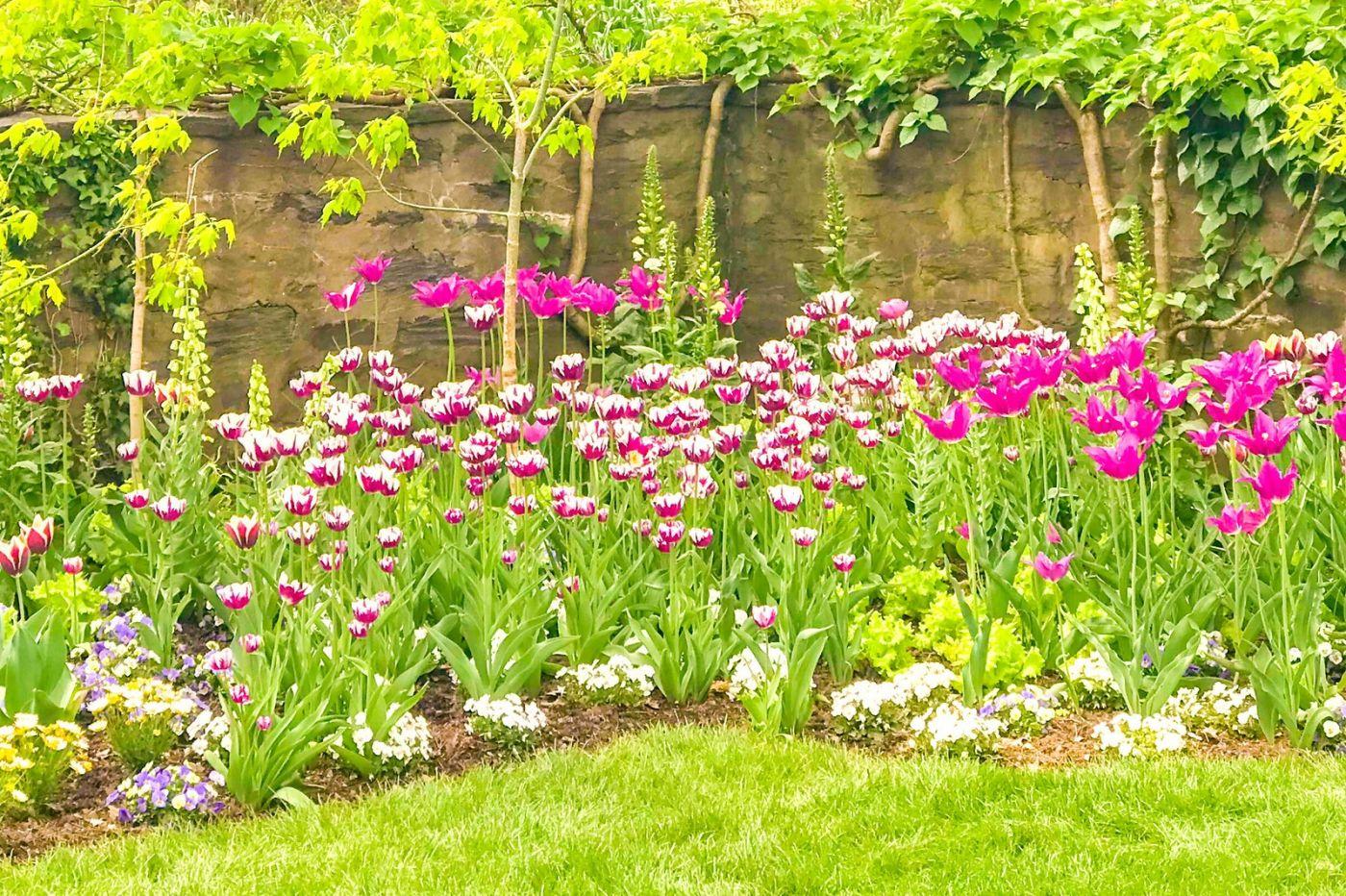 Chanticleer花园,点亮心灵_图1-14
